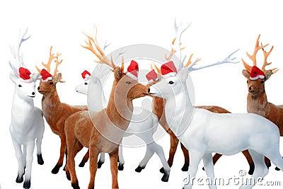 Elk Christmas.