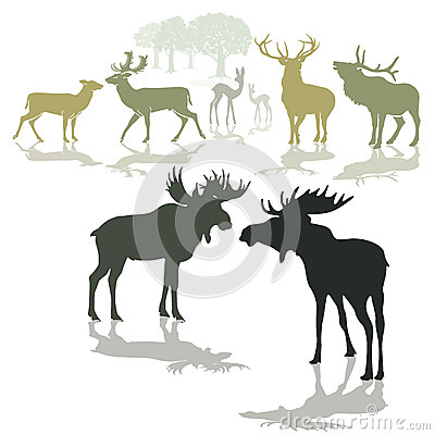 Free Elk Deer And Fawn Royalty Free Stock Images - 29482749