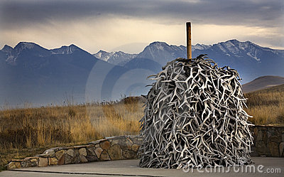 Elk Horns Pile National Bison Range Charlo Montana