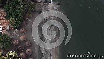 Em cima da praia video estoque