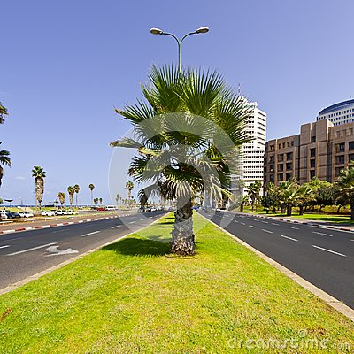Free Embankment Of Tel Aviv Stock Photo - 101850720