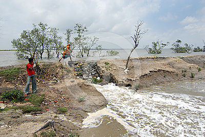 Embankment Problem in Sundarban Editorial Stock Image