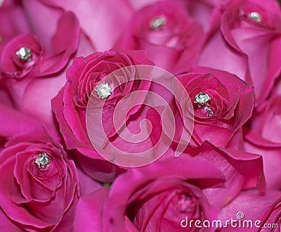 Embellished Roses