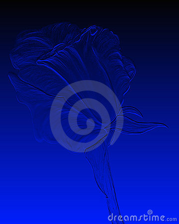 Embossed blue rose