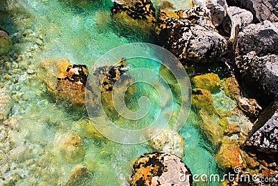 Emerald alpine river