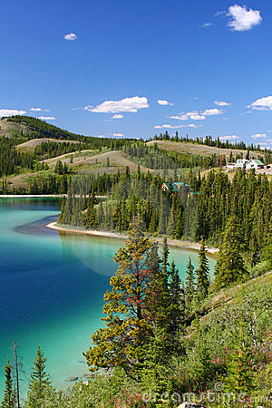 Free Emerald Lake, Yukon Territory Royalty Free Stock Images - 20339099