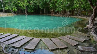 Emerald Pool Unseen Thailand Green and blue water is a tourist attraction in Krabi Thailand Asia. Emerald Pool Unseen  Thailand Green and blue water is a tourist stock video