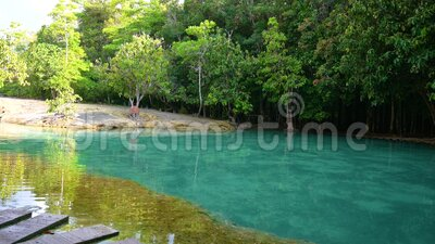 Emerald Pool Unseen Thailand Green and blue water is a tourist attraction in Krabi Thailand Asia. Emerald Pool Unseen  Thailand Green and blue water is a tourist stock footage