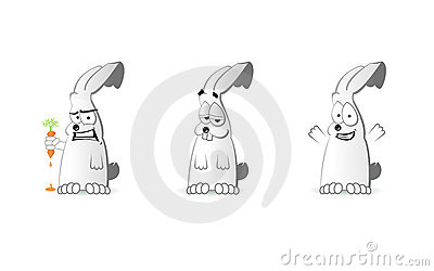 Emotion of the Rabbit
