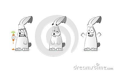 Emotion of the Rabbit
