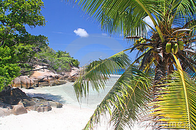 Empty beach on Grand Soer, Seychelles