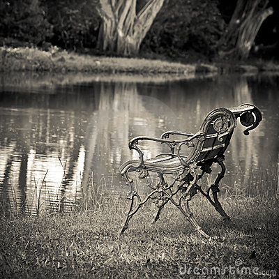 Free Empty Bench Royalty Free Stock Image - 20573586