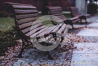 Empty Benches Free Public Domain Cc0 Image
