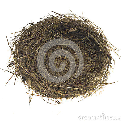 Free Empty Bird Nest Stock Photos - 57436933
