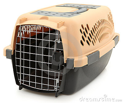 Empty Clean Pet Carrier Over White