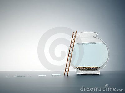 Empty fishbowl with a ladder