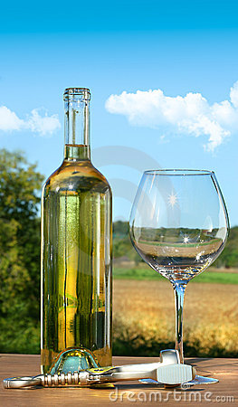 Free Empty Glass With A Bottle Of White Wine Stock Photography - 10764782