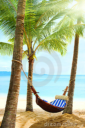 Free Empty Hammock Between Palm Trees Royalty Free Stock Photo - 21296225