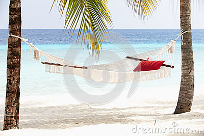 Empty Hammock Between Palm Trees