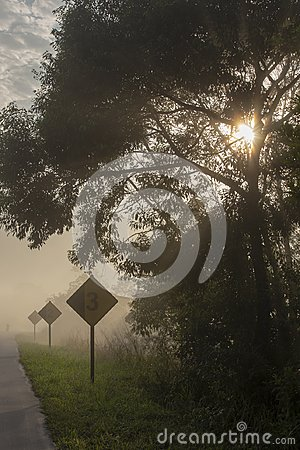 Free Empty Highway In Morning Mist With Warning Signs Royalty Free Stock Photography - 123863667