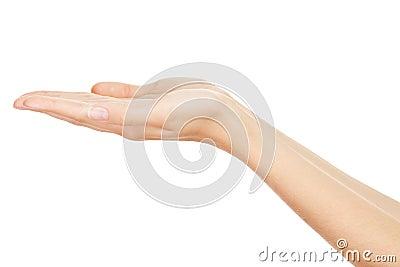 Empty Human Hands(Beauty Woman hands)