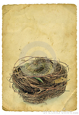 Free Empty Nest Royalty Free Stock Images - 19158619