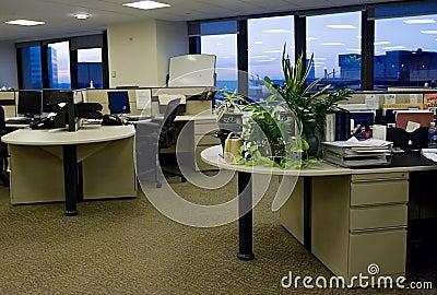 Empty Office 3