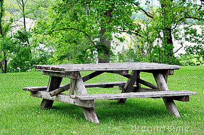 Empty Picnic Table in Park