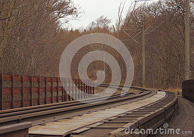 Empty railroad though forest at winter time