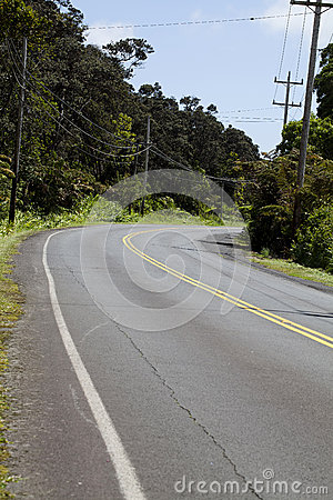 Empty Road Curving Through Hawaii Vegetation