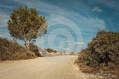 Empty road in sunlight blue sky destination