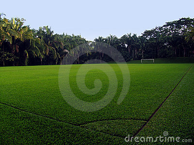 An Empty Soccer Field