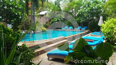 Empty swimming pool with clear water in the early morning. Swimming poll with blue sunloungers in the shade of trees stock footage