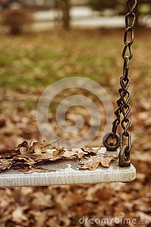 Free Empty Swing With Leaves In The Autumn Season Royalty Free Stock Photo - 52872945