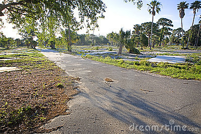 Empty Trailer Park Stock Images - Image: 12429204