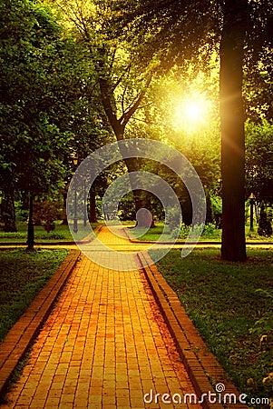 Empty walkway in park