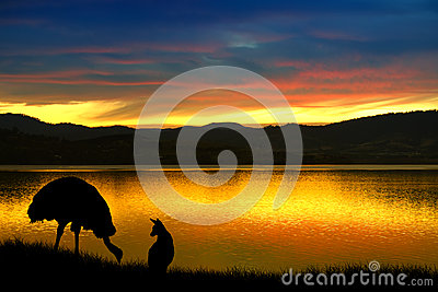 Emu and kangaroo in Australia