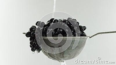 En el vídeo que vemos las uvas en un tamiz, agua comienza caída del top en un jet en el medio de las paradas video del agua almacen de metraje de vídeo
