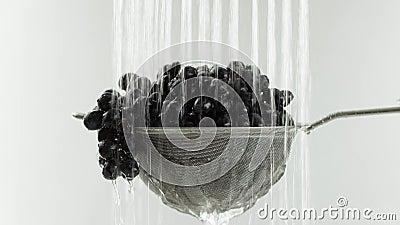 En el vídeo vemos las uvas en un tamiz, caída del agua del top en el centro de las paradas video del agua, fondo blanco almacen de video