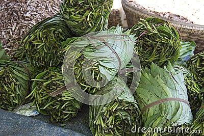 Betal Leaf - narkotiskt preparat - Myanmar