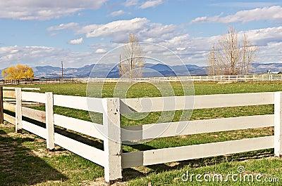En Ranch, MÃ¥nga Staket Royaltyfria Foton - Bild: 24989908