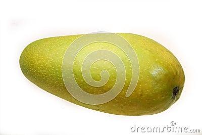 Tropisk mango