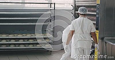 En una gran panadería manufacturera dos ww cargar de la estantería la masa cruda en la máquina industrial de horno para hacer hor almacen de video