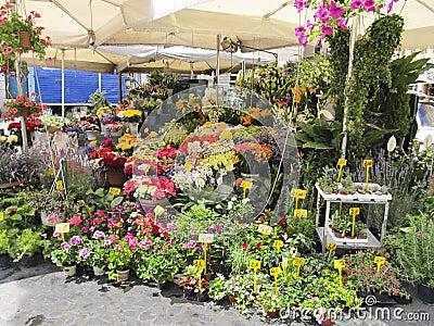 En utomhus- blomsterhandlare