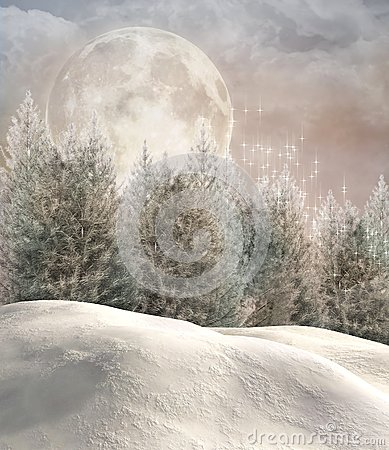 Free Enchanted Winter Forest Royalty Free Stock Images - 33031719