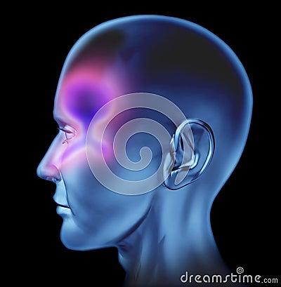 Encombrement nasal humain