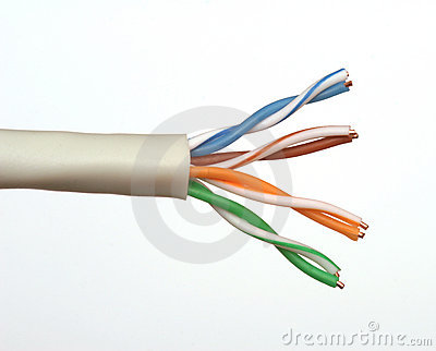 End of a Network Cable