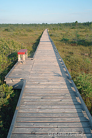 Free Endless Boardwalk Royalty Free Stock Photography - 16562737