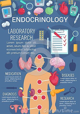 Free Endocrinology Poster With Human Endocrine System Royalty Free Stock Photos - 122160898