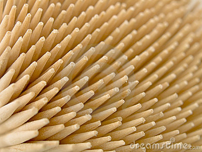 Ends of wooden toothpicks